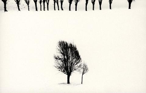 Snow White - Abbas Kiarostami