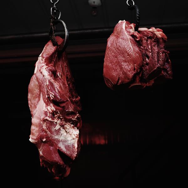 meat, 2015 - Chaokun Wang