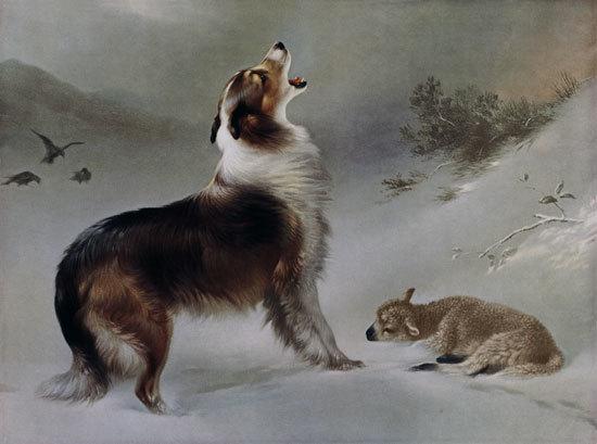 Dog - August Friedrich Schenck