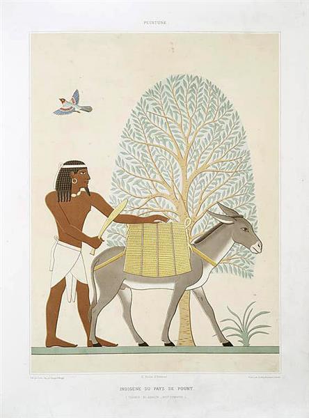 Peinture : indigène du pays de pount (Thèbes : El-Assacif - XVIIe dynastie), 1878 - Émile Prisse d'Avennes