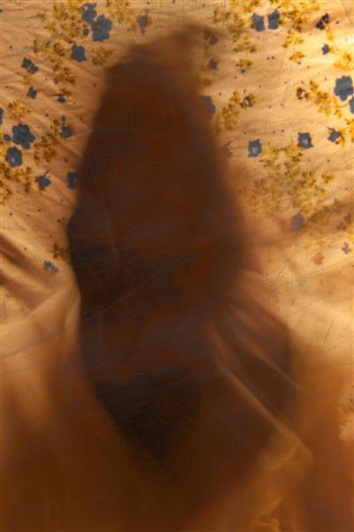 Self portrait III, 2021 - A.Mishra