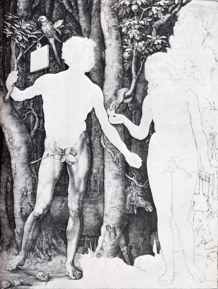 Albrecht Durer Adam And Eve Adam And Eve Albrecht Durer