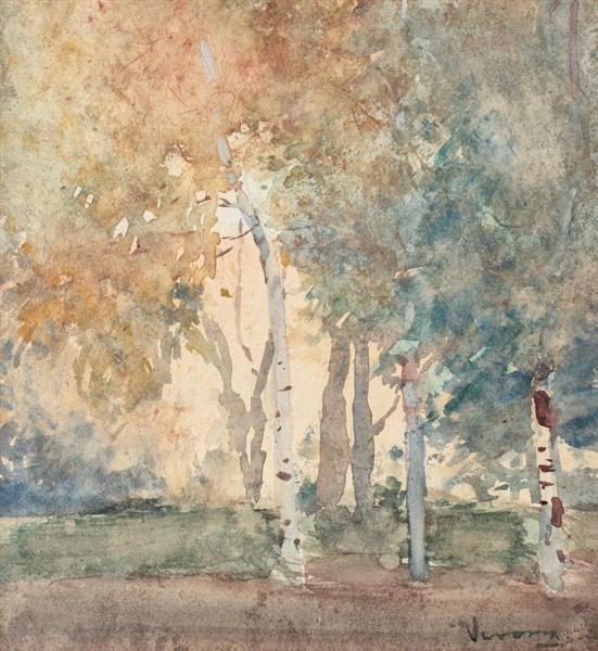 Birch Forest - Arthur Verona