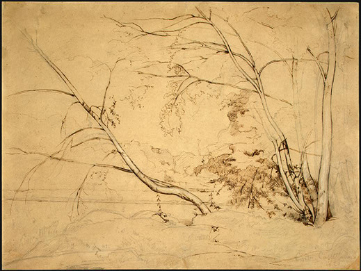Clump of Trees at Civita Castellana - Camille Corot