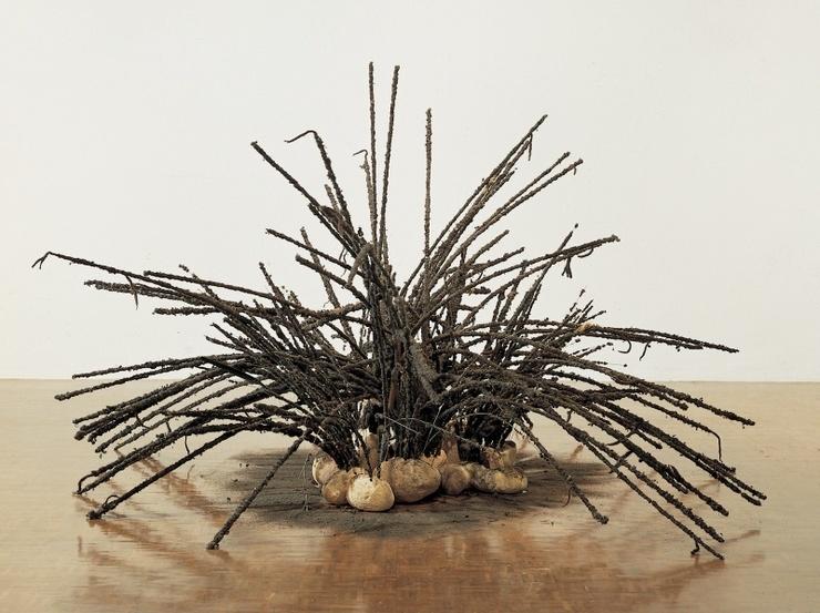 Untitled, 1992 - David Hammons