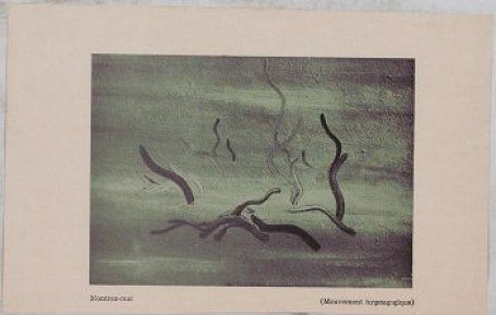 ? (Hypnagogic Movement), 1945 - Dolfi Trost