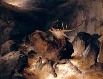 Deer and Deer Hounds in a Mountain Torrent - Эдвин Генри Ландсир