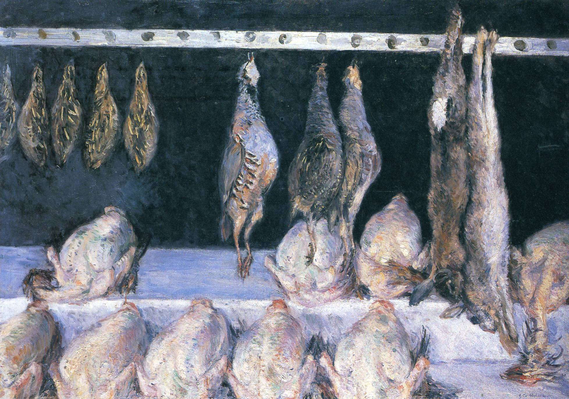 Display of Chickens and Game Birds, 1882