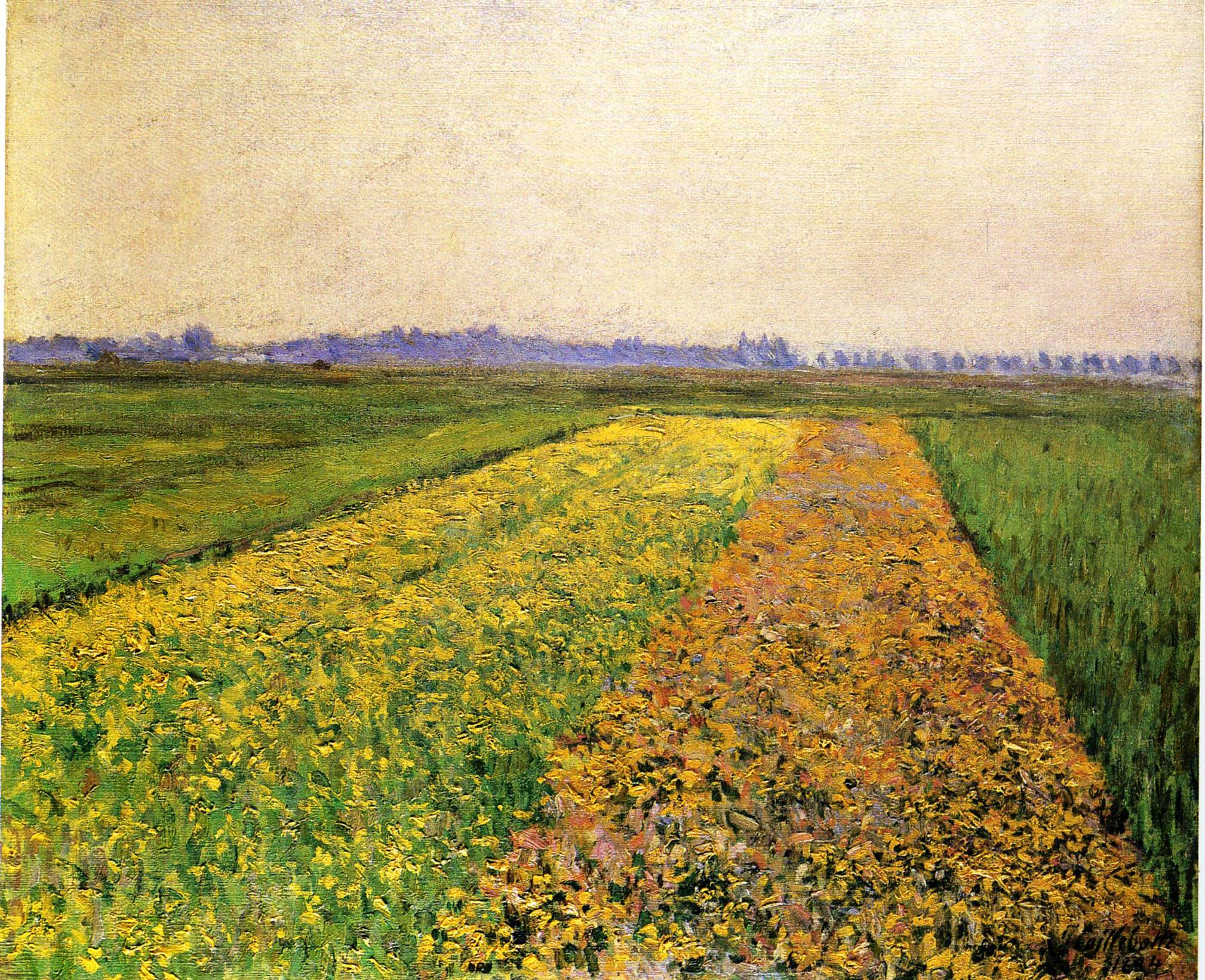 The Yellow Fields at Gennevilliers, 1884