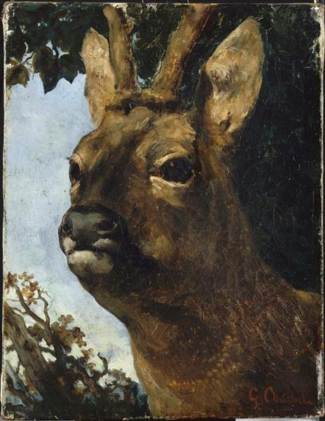 Head of a Young Doe - Gustave Courbet