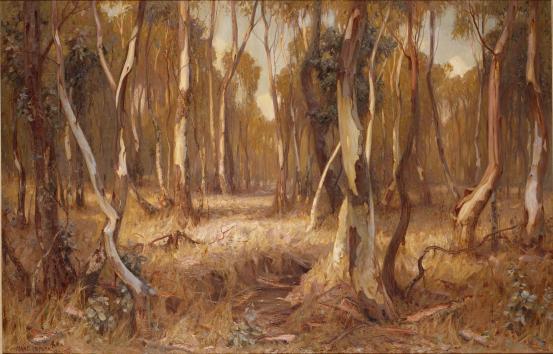 Sunshine and shadow, 1905 - Hans Heysen