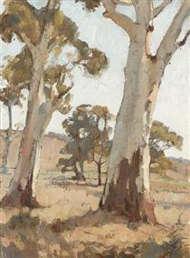 Study, Gum Trees, Woodside - Horace Trenerry