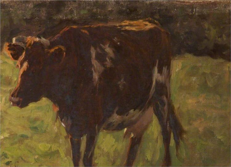 Cow - James Charles