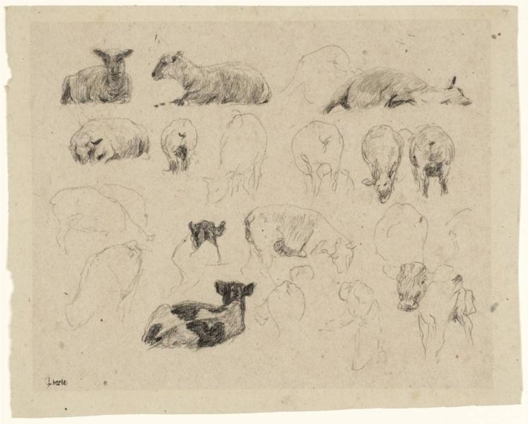 Studies of Sheep, 1863 - James Charles