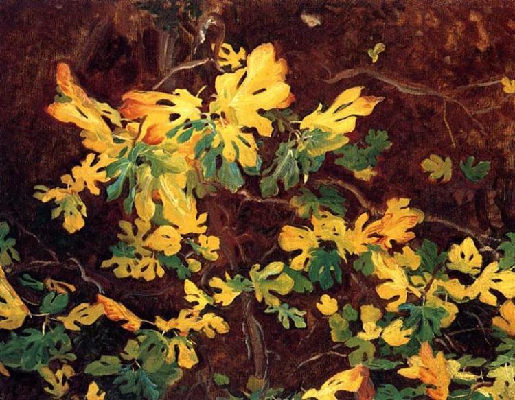 Study of a Fig Tree, 1908 - John Singer Sargent