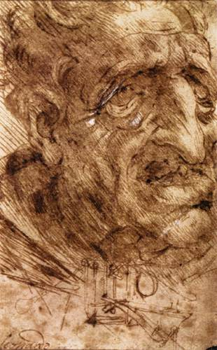Head of an Old Man, 1488