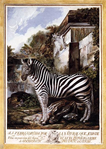 Zebra - Луїс Парет-і-Алькасар