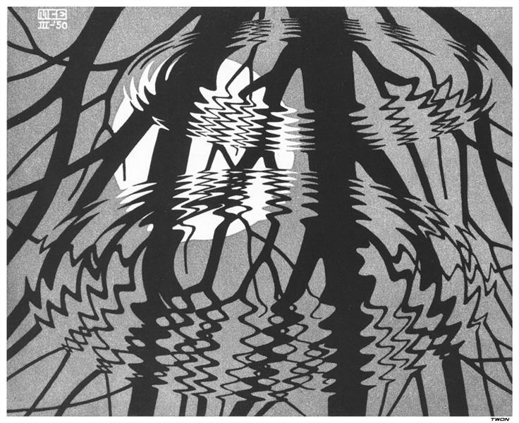Rippled Surface - M.C. Escher