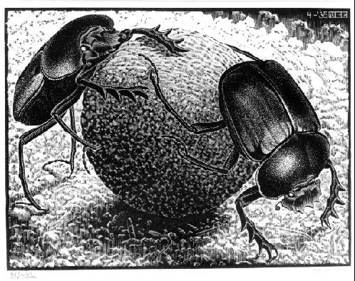 Scarabs, 1935 - M.C. Escher