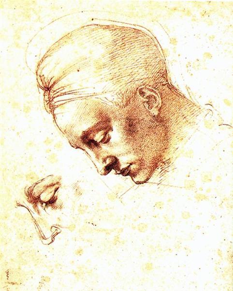 Head, 1530 - Michelangelo