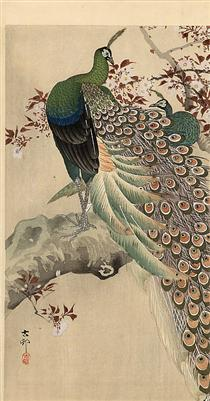 Two green peacocks on the bough of a flowering tree - Ohara Koson