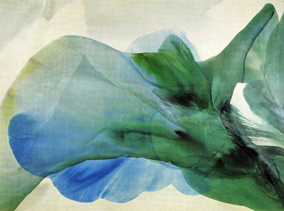 Phenomena Kwan Yin, 1969 - Пол Дженкінс