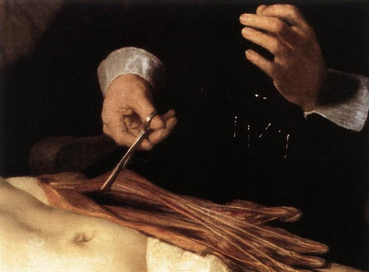 The Anatomy Lesson of Dr. Nicolaes Tulp(fragment), 1632 - Rembrandt ...