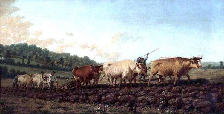 Ploughing in the Nivernais, France, 1842 - Rosa Bonheur