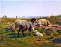 Sheep and a Lamb - Роза Бонёр
