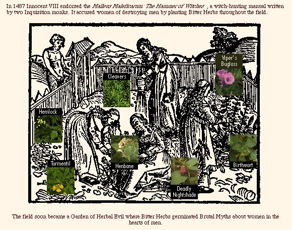 The Garden of Brutal Myth, 1996 - Sonya Rapoport