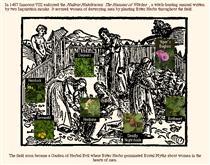The Garden of Brutal Myth - Sonya Rapoport