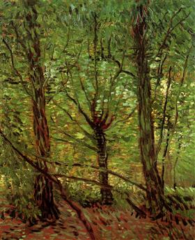 Los árboles y maleza, Vincent van Gogh